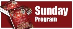 btn-program