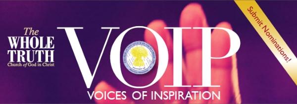 banner-VOIP-2013