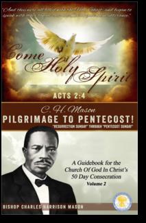pict-pentecost-guidebook
